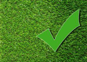 Идеална равномерно поникнала зелена трева