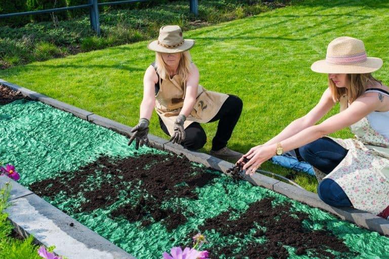 soil-grass-roll