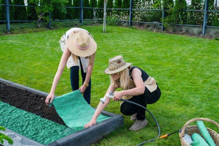 Бързо и лесно полагане на тревната ролка върху подравнената почва
